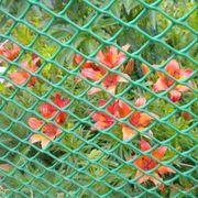 Пластиковая сетка Сетка пластиковая шестиугольная, ромбическая, 40 × 40 мм, ландшафт